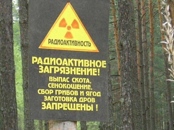 bielorussia zona contaminata